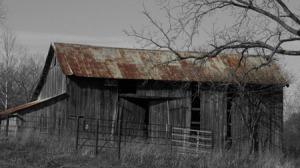 Rust Harvest