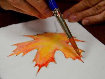 vibrant-autumn-leaves