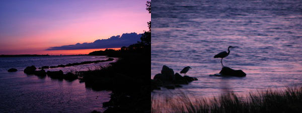 fading-light-of-dusk
