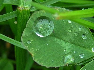 raindrops-start-to-fall
