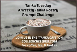 tanka-tuesday_logo