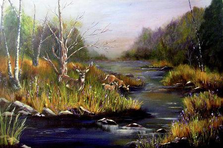 birch on bank of stream