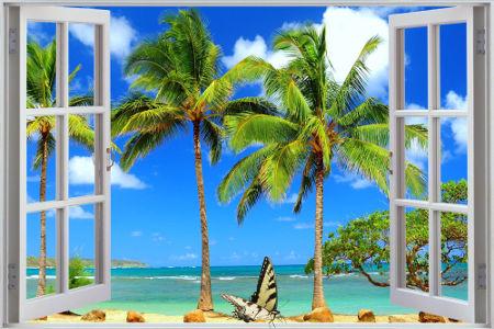 through open window.jpg
