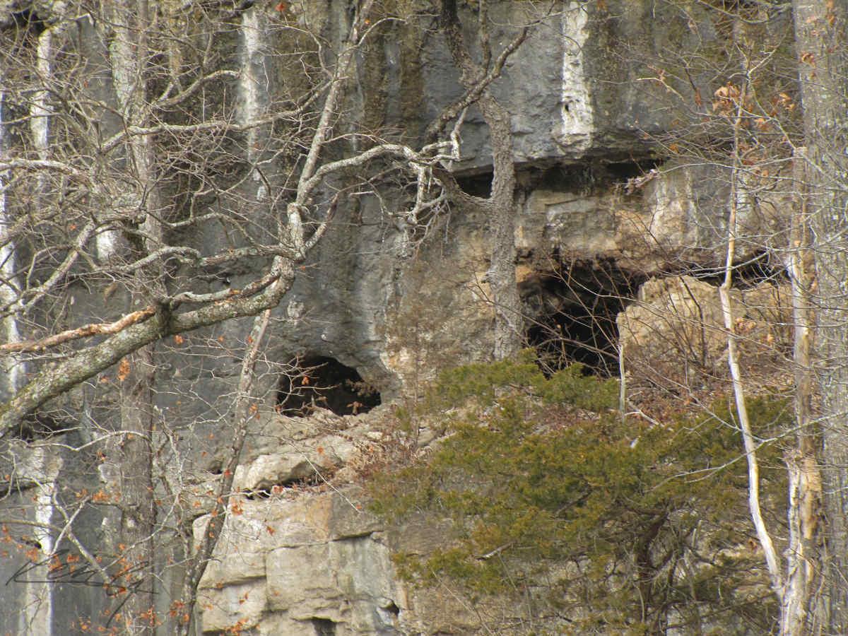 Bluff Caves
