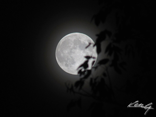 tonight's moon rises_9-29-12.jpg