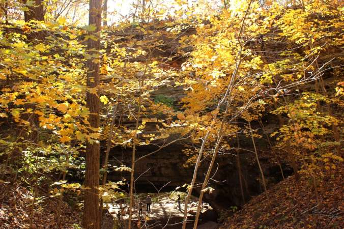Fall Color, Finally_9